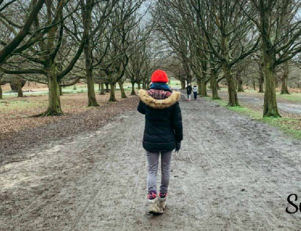 Walking therapy in nature